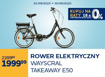 Rower elektryczny składany Wayscral Takeaway E50 tree